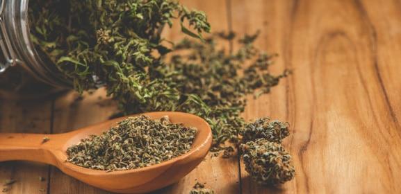 Effet cannabis : comment le cannabis agit sur vous